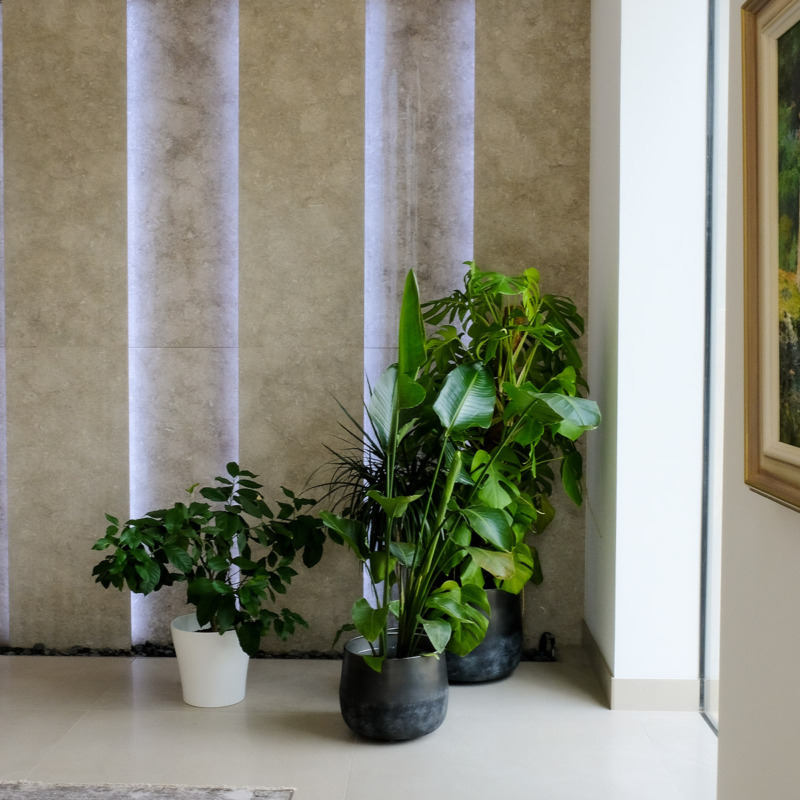 How Can You Make Your Smart Home Carbon Neutral? 6